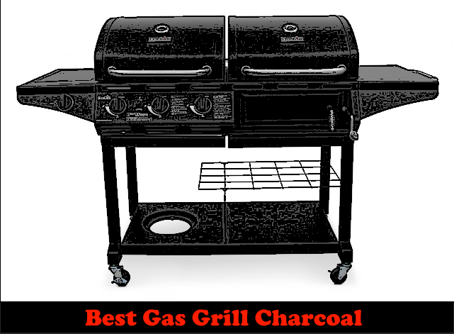 Best Gas Grill Charcoal